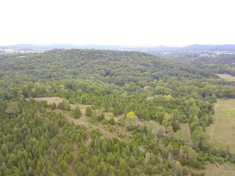 102.122 Acres - Heavily Wooded