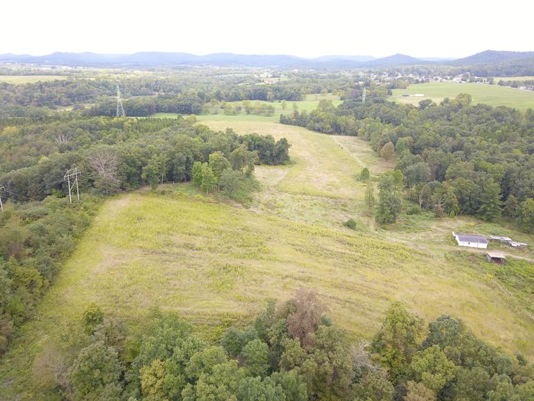 61.616 Acres - Heavily Wooded