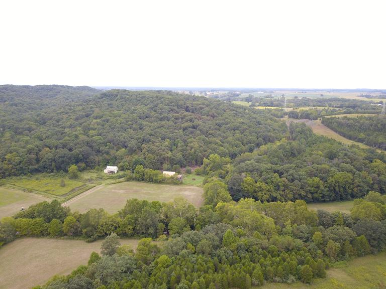 85.237 Acres - Heavily Wooded